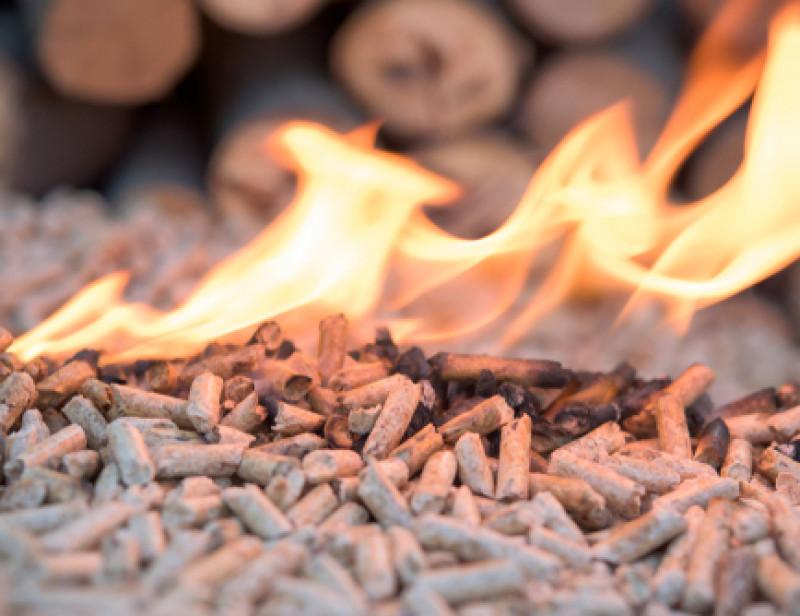 11 lauréats à l'appel à projets — Biomasse