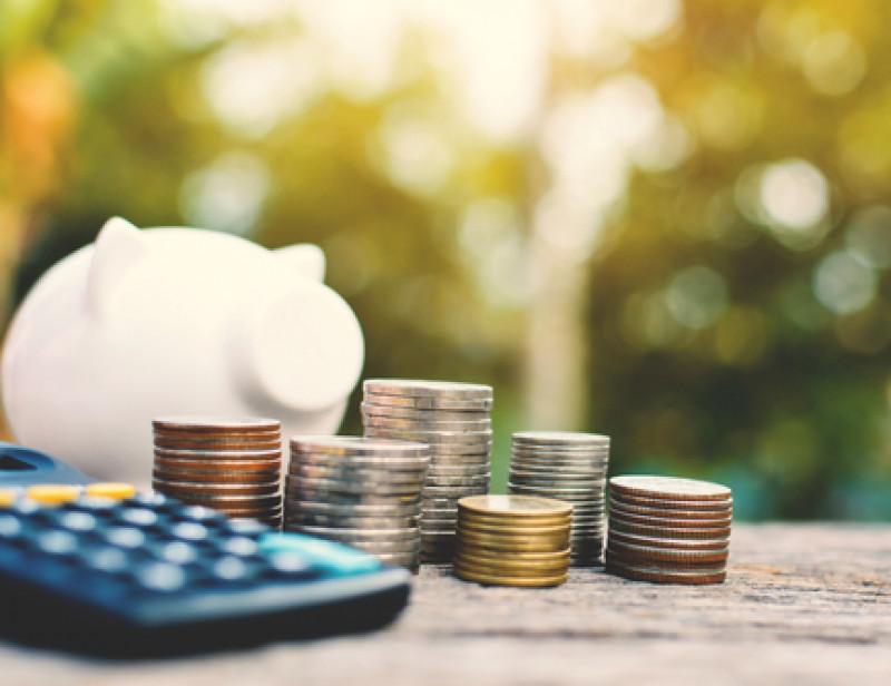 Comment Mettre Son Epargne Au Service Du Developpement Durable