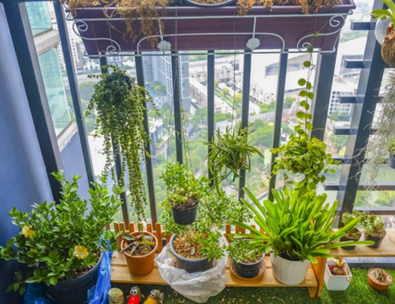 Six Conseils Pour Mettre Son Balcon Au Vert En Mode Durable