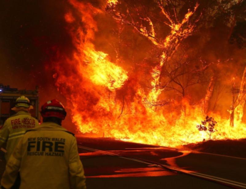 Incendies En Australie Comment Faire Don Derriere Son Ecran
