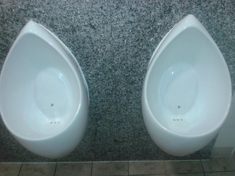 Eviter les pièges de la pensée : Les biais cognitifs Nudge_Toilet_1